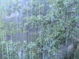 В Ростовской области со второй половины воскресения может испортиться погода